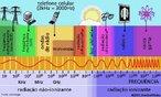 Representa uma sequência ordenada no sentido crescente das frequências de ondas eletromagnéticas. Cada região desse espectro corresponde a ondas que apresentam determinada faixa de frequência e possui aplicações distintas.  <br /><br />  Palavras-chave: Ondulatória, período, frequência, comprimento, luz, eletromagnetismo.