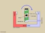 Um motor elétrico é um dispositivo que transforma energia elétrica em energia mecânica. <br /><br />  Palavras-chave: Eletromagnetismo, ímã, energia elétrica, energia mecânica, motor elétrico, força, eletricidade, corrente contínua, corrente alternada.