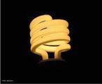 Ao contrário das lâmpadas de filamento, a lâmpada fluorescente possui grande eficiência por emitir mais energia eletromagnética em forma de luz do que calor. <br /><br />  Palavras-chave:  Eletromagnetismo, lâmpada, fluorescente, eletricidade, luz, energia, calor, corrente elétrica, tubo, gás, eletrodo, mercúrio, argônio.