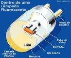 As lâmpadas fluorescentes possuem um par de eletrodos em cada extremidade cuja função é pré-aquecer seu interior para reduzir a tensão elétrica necessária à ionização. Apresenta um tubo de vidro coberto com um material à base de fósforo que, quando excitado com radiação ultravioleta gerada pela ionização dos gases produz luz visível. Internamente são carregadas com gases inertes a baixa pressão. <br /><br />  Palavras-chave:  Economia, luz, energia, eletromagnética, calor, eletrodos, lâmpadas.